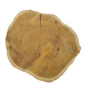 Large Round Teak Slices