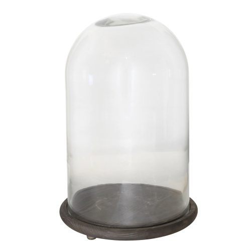 Large Cloche with Wood Base